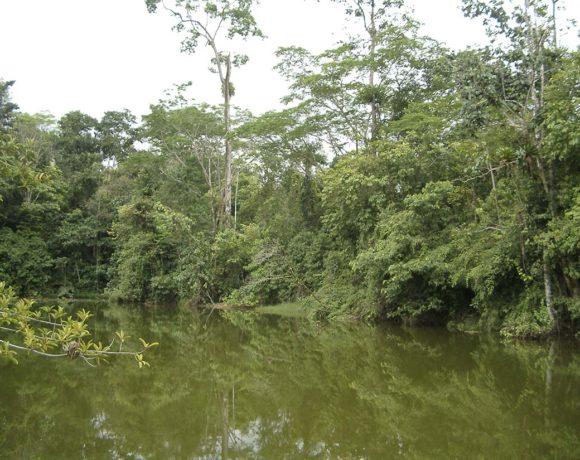 Parque Nacional Barbilla