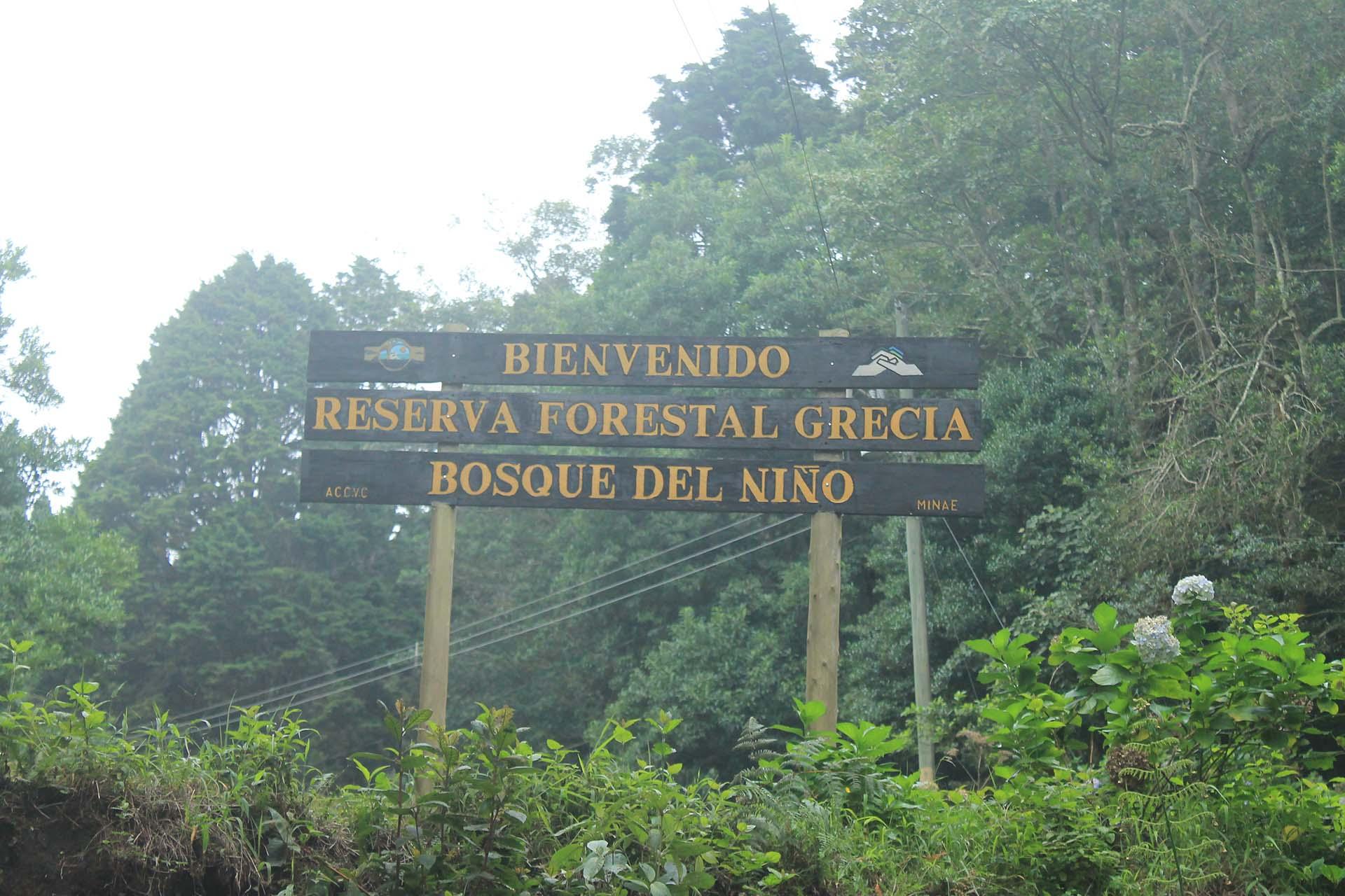 Reserva Forestal Grecia