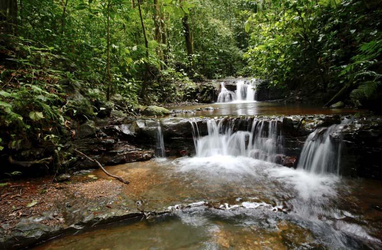 Parque Nacional La Cangreja